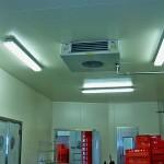 Kühlraum Lagerhaltung