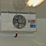 Kühlzelle Lüftung
